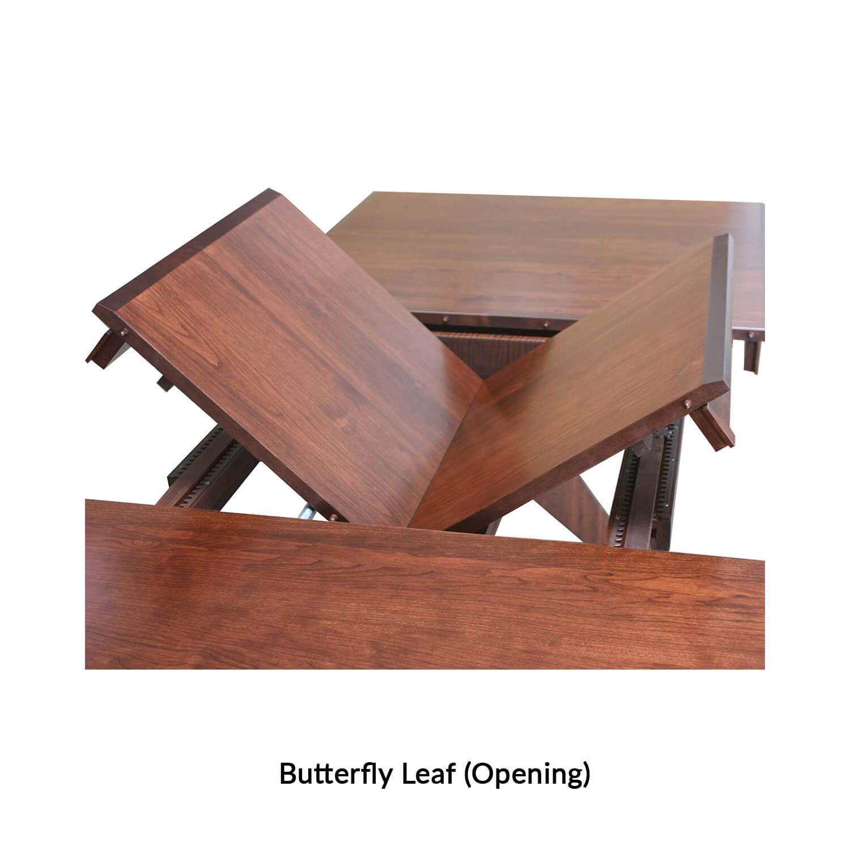 3.1-butterfly-leaf-opening-.jpg