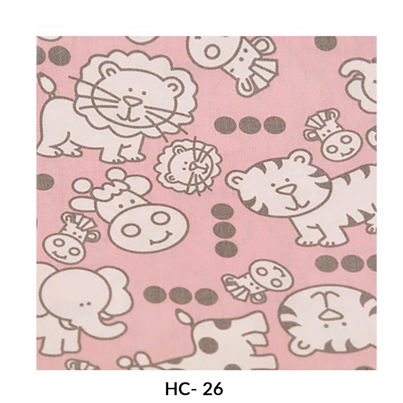 hc-26.jpg