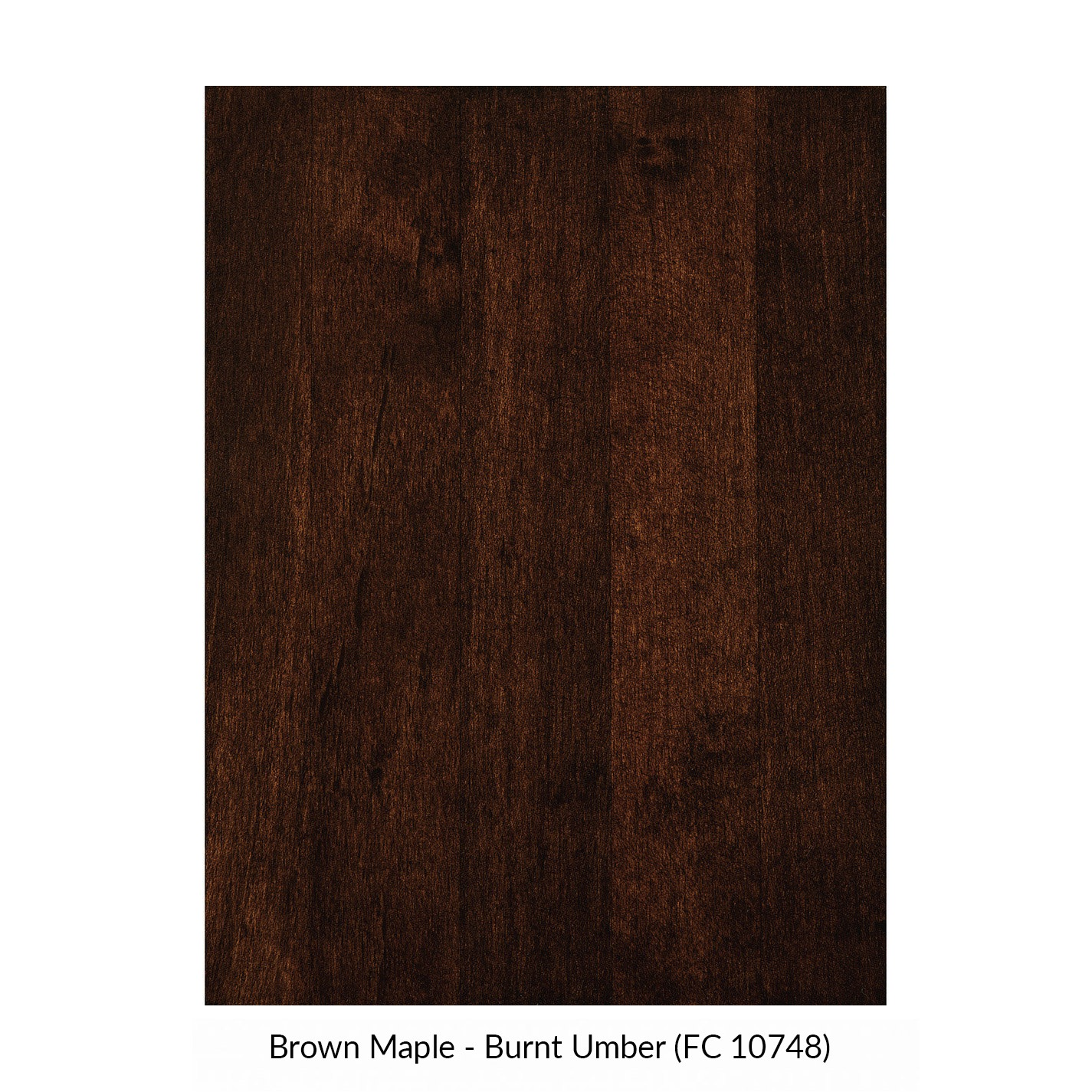 spectrum-brown-maple-burnt-umber-fc-10748.jpg