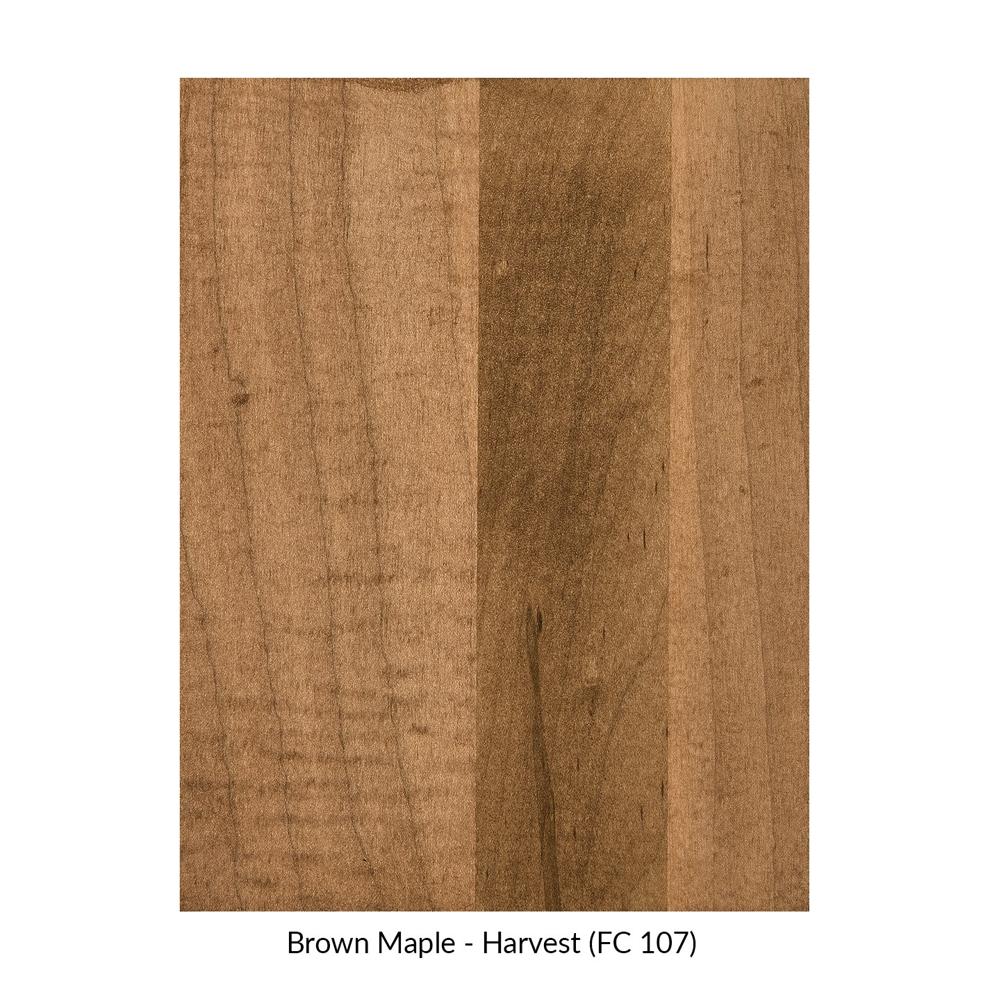 spectrum-brown-maple-harvest-fc-107.jpg