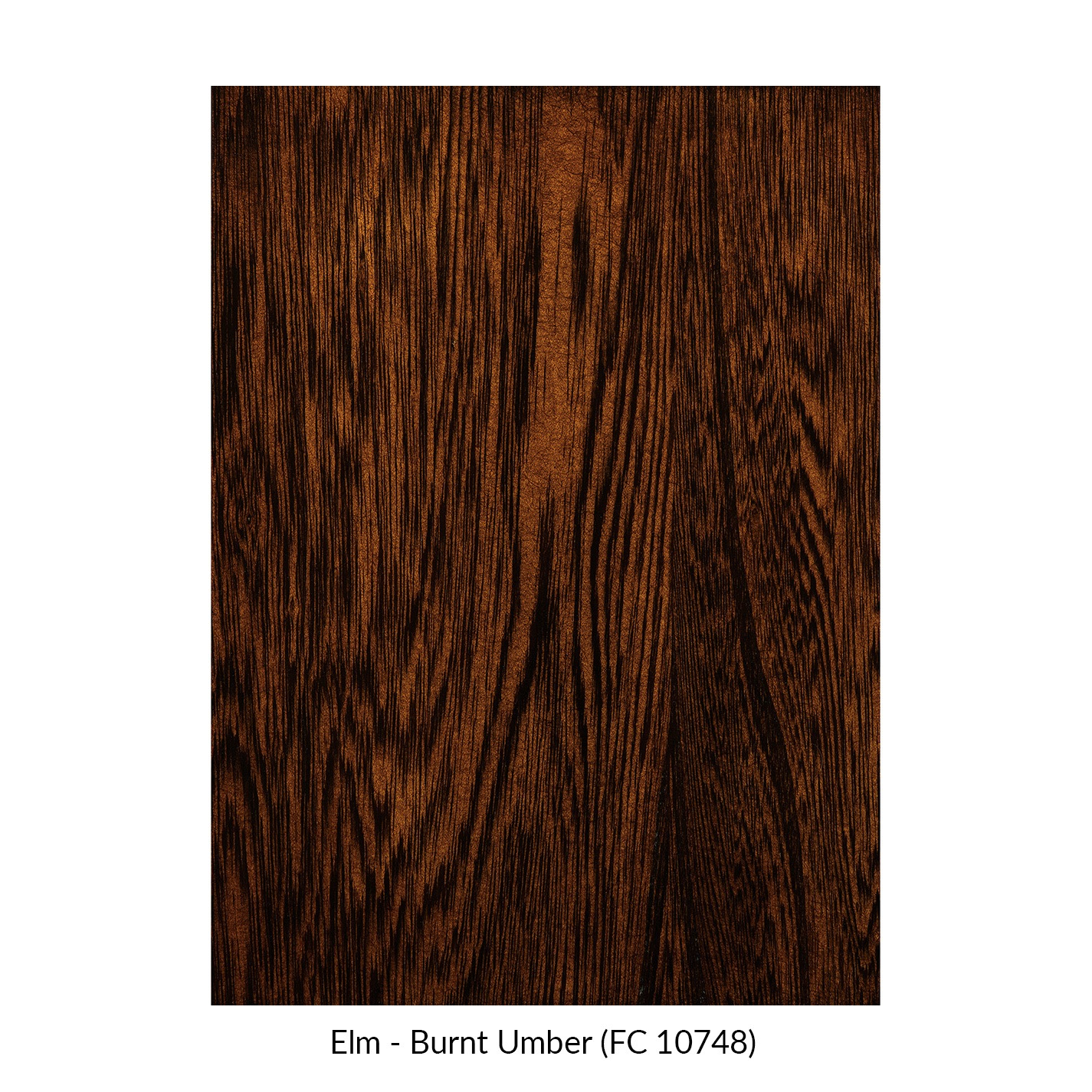 spectrum-elm-burnt-umber-fc-10748.jpg