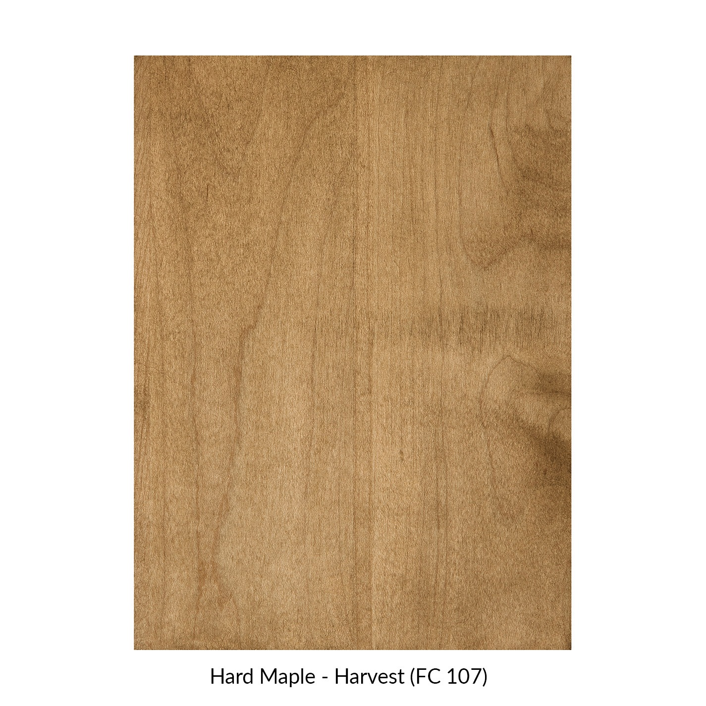 spectrum-hard-maple-harvest-fc-107.jpg