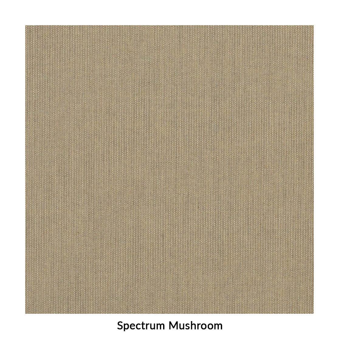 spectrum-mushroom.jpg