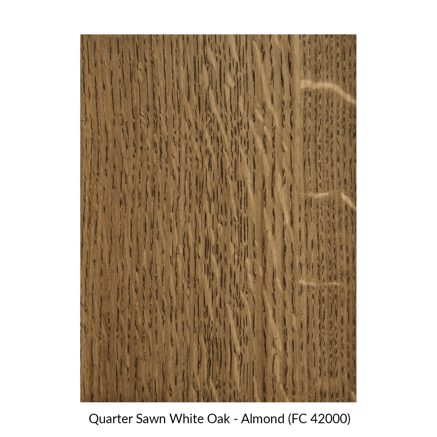 spectrum-quarter-sawn-white-oak-almond-fc-42000.jpg
