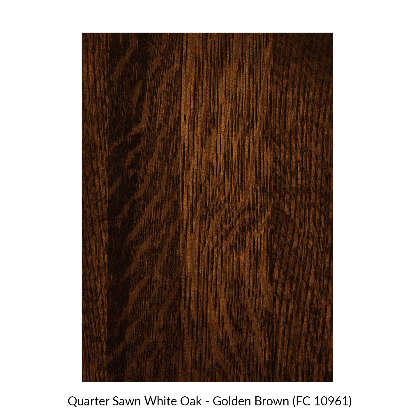 spectrum-quarter-sawn-white-oak-golden-brown-fc-10961.jpg