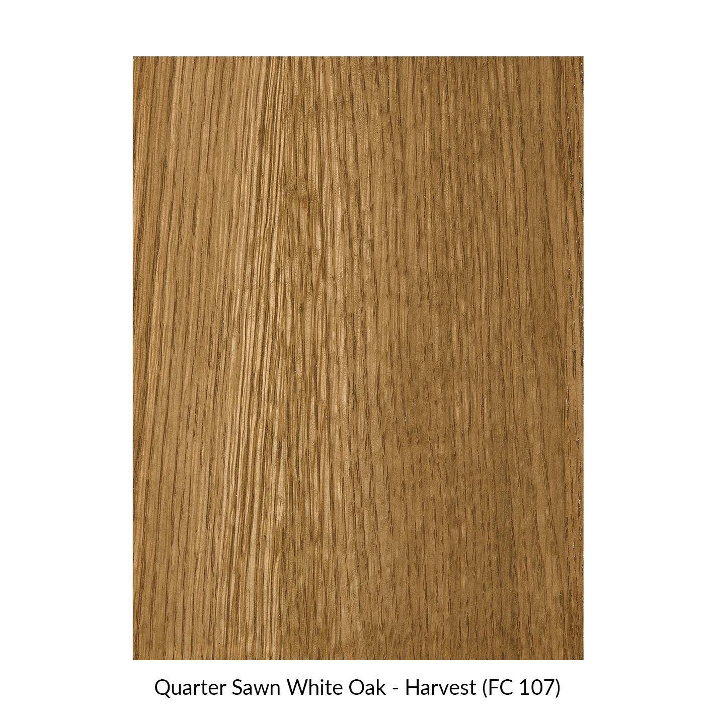 spectrum-quarter-sawn-white-oak-harvest-fc-107.jpg