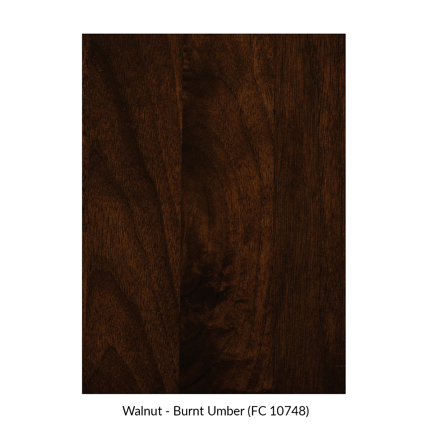 spectrum-walnut-burnt-umber-fc-10748.jpg